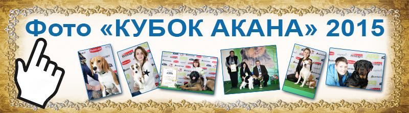 Фото-отчет кубок АКАНА 2015