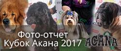 Фото-отчет кубок АКАНА 2017