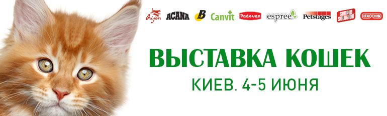 Выставка кошек. Киев. 4 - 5 июня