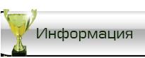 инфотмация 2013